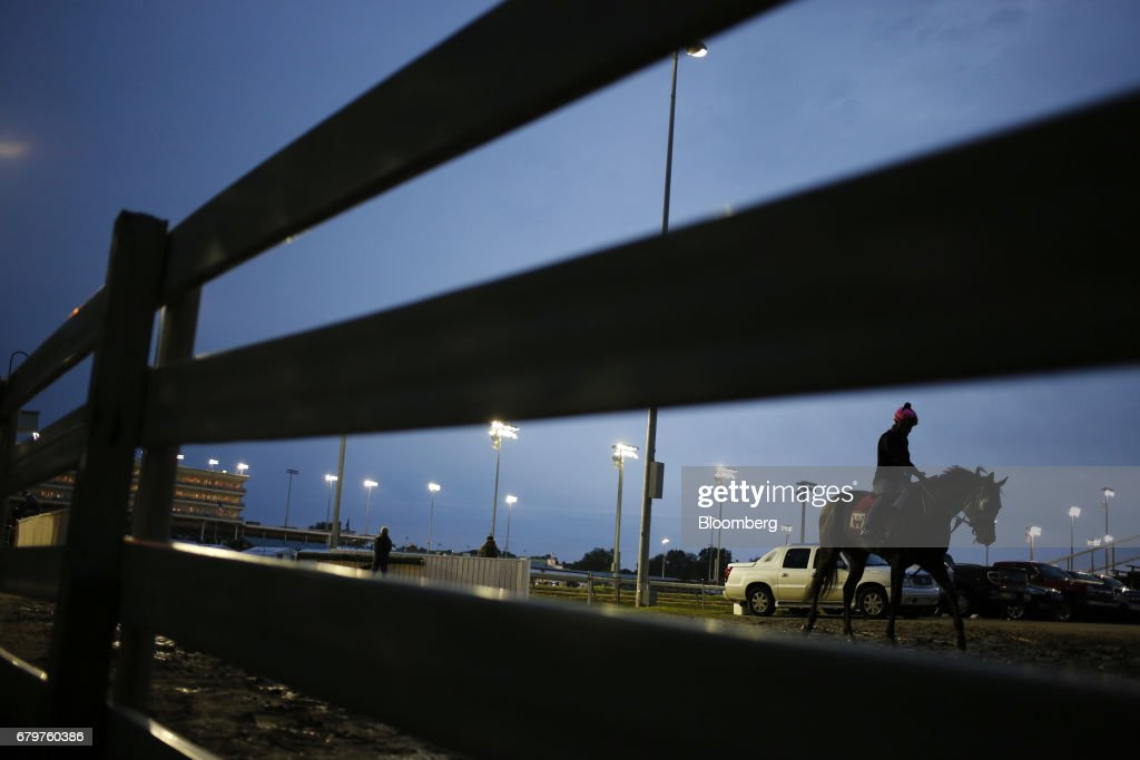 A thoroughbred racehorse walks back to its barn after morning workouts before the 143rd running of the Kentucky Derby at Churchill Downs in Louisville, Kentucky, U.S., on Saturday, May 6, 2017. The 143rd running of the Kentucky Derby will feature a field of twenty horses with the winner receiving a gold trophy plus an estimated $1.24 million payday. Photographer: Luke Sharrett/Bloomberg via Getty Images