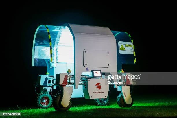 A Thorvald autonomous modular robot developed by Saga Robotics stands prepared to complete an UltraViolet light treatment on a crop of strawberries...