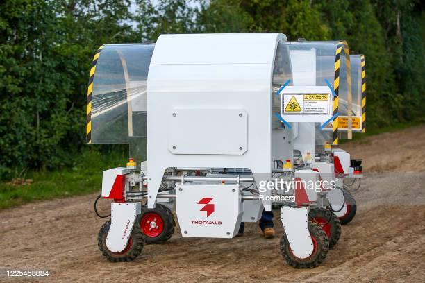 Thorvald autonomous modular robots developed by Saga Robotics stand prepared to complete an UltraViolet light treatment on a crop of strawberries...