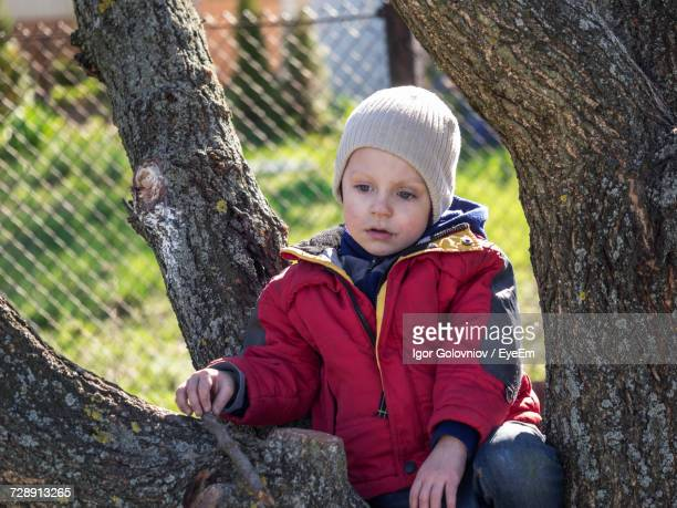 thoughtful boy sitting on tree - igor golovniov stock pictures, royalty-free photos & images