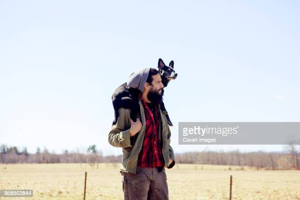 thoughtful man carrying dog on shoulders while standing at field against clear sky - alleen één mid volwassen man stockfoto's en -beelden