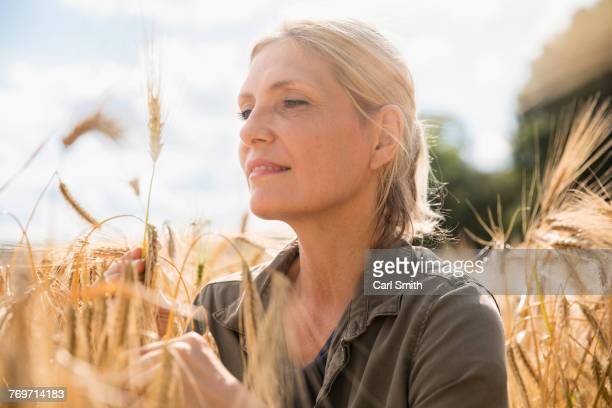 Thoughtful smiling woman looking at wheat ear in farm on sunny day