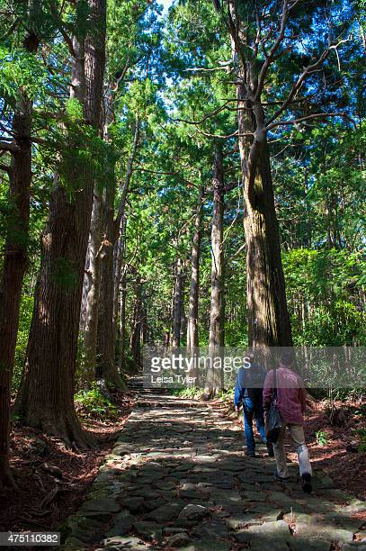 A thousand years ago in the heyday of the Japanese imperial court royals and nobles would embark on weekslong treks to pray at the three principle...