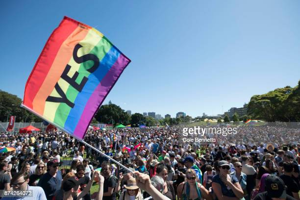 Thousands gather in Prince Alfred Park on November 15 2017 in Sydney Australia Australians were asked vote in the Australian Marriage Law Postal...