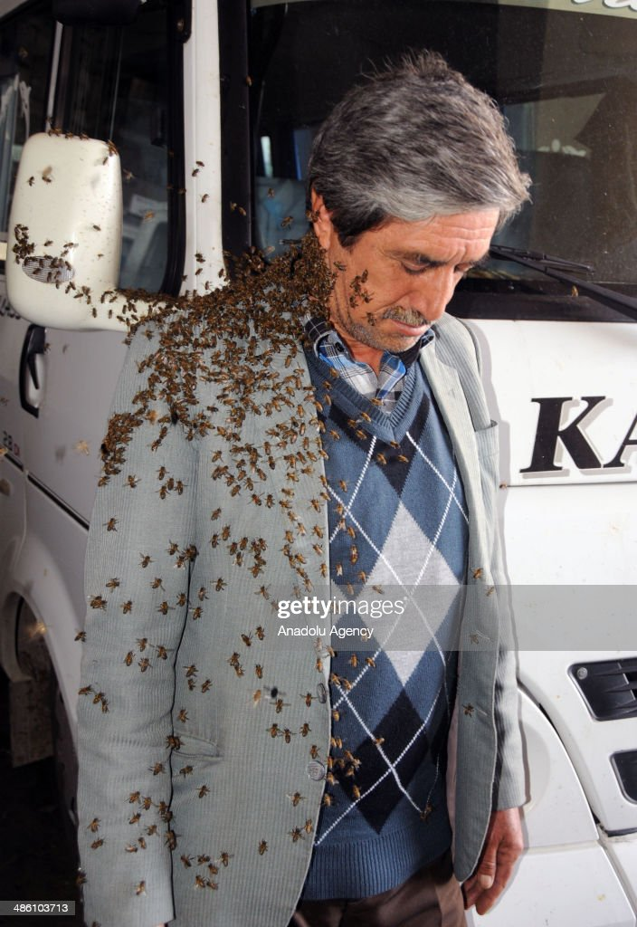 Thousands of bees disturb local residents of Semt Pazari district in Aydin city which is located at the Aegean region of Turkey on April 22, 2014.