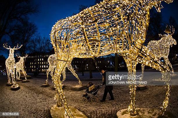 thousands of lights decorate moose statues in stockholm on november 28 2016 stockholm has lit over