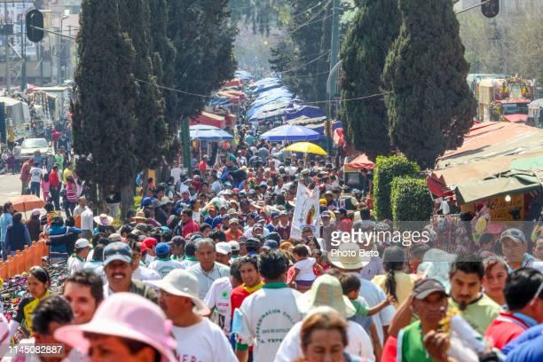 méxico-virgen de guadalupe-peregrinos - festival de la virgen de guadalupe fotografías e imágenes de stock