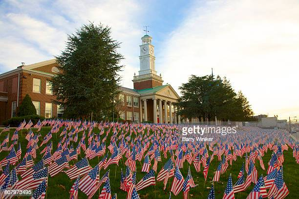 Thousands of small American flags on lawn