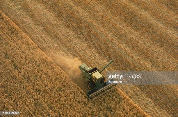 A thrasher harvesting a wheat field in Lyons in Kansas