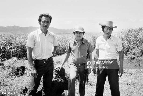 Three agricultural advisers stand in a sugar cane field April 10, 1983 in San Miguel, El Salvador. Farm workers in El Salvador were caught in the...