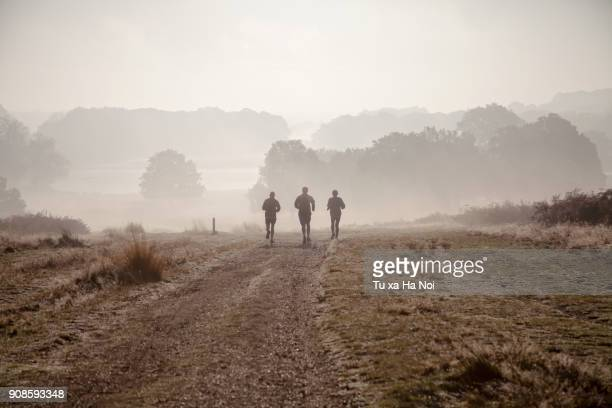 three amigos running in richmond park, london - richmond upon thames stock pictures, royalty-free photos & images