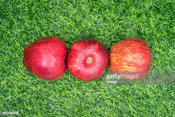 Three apples on grass