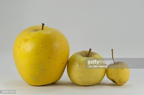Three apples yellow