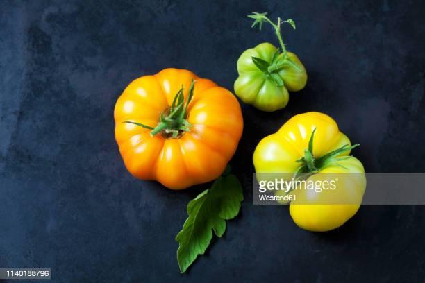 Three Azoychka tomatoes on dark ground