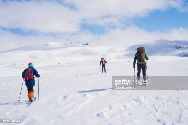 Three Back Country skiers on Hardangervidda plane in Norwey