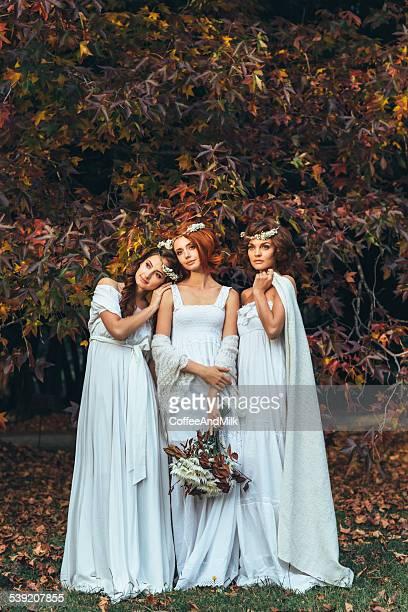 Drei schöne Braut auf einem Hintergrund der Herbst Wald