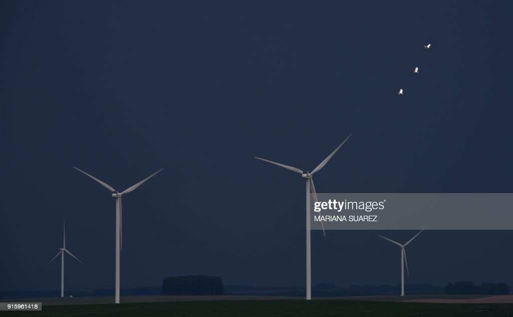 Three birds fly past a wind farm near the city of Florida, about 100 km north of Montevideo, as a storm darkens the sky in the afternoon on February 8, 2018. / AFP PHOTO / Mariana SUAREZ