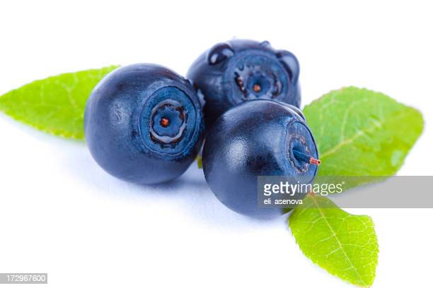 Three blueberries with leaves over a white background