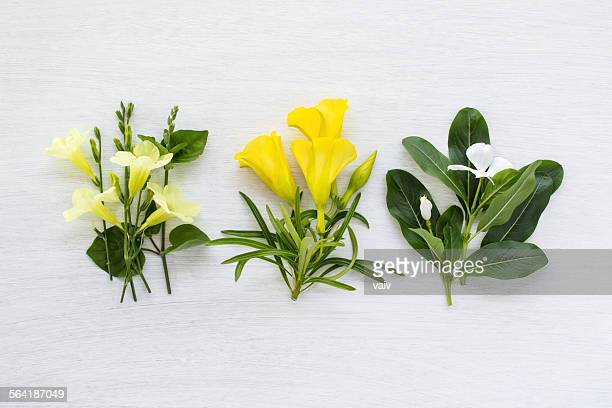 Three bouquets of yellow and white flowers on white background