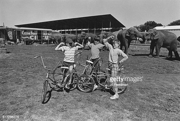 Three boys flexing their muscles at the Clyde BeattyCole Bros Circus show USA 1971