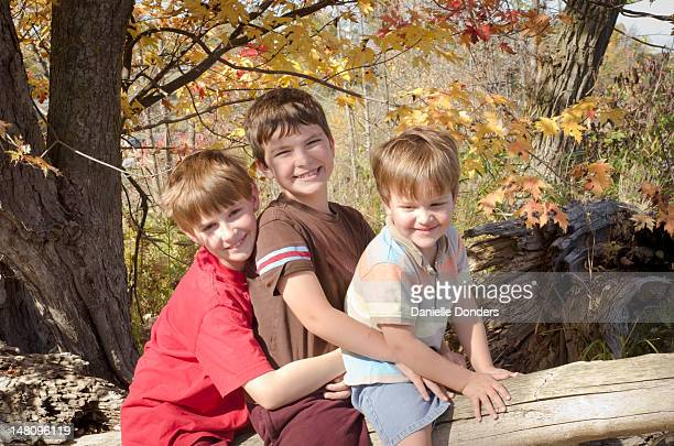 """three boys on log with autumn leaves - """"danielle donders"""" stock pictures, royalty-free photos & images"""