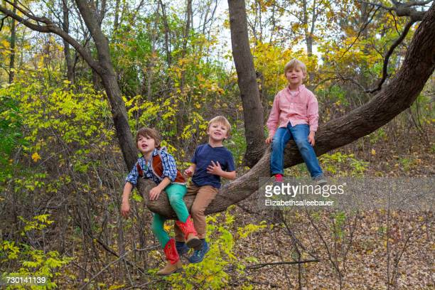Three boys sitting in a tree