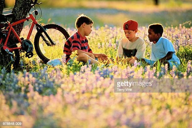 Three boys(7-8) sitting in field of flowers,bike against tree