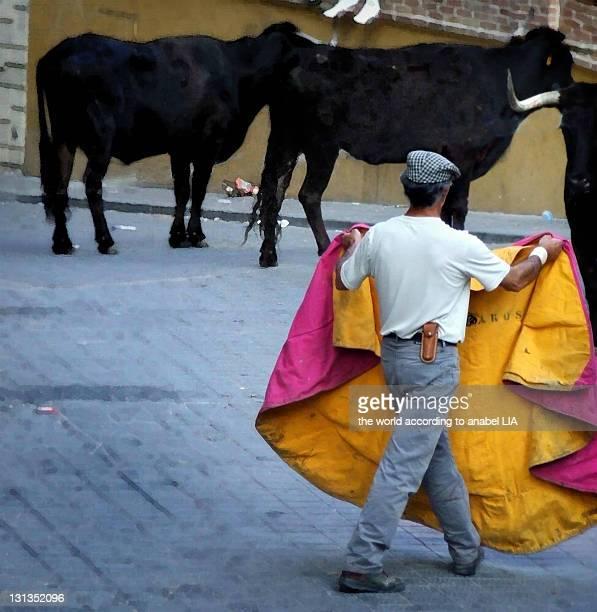 Three bulls with one bullfighter
