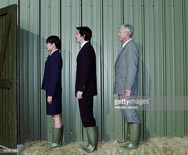 Three business people wearing wellingtons boots on haystack, profile