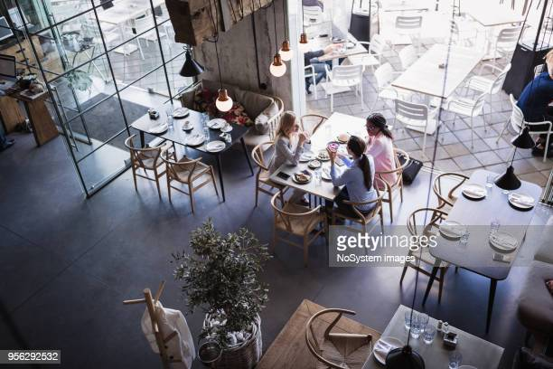 three businesswomen having meeting and business lunch at high-end restaurant - restaurant stock photos and pictures