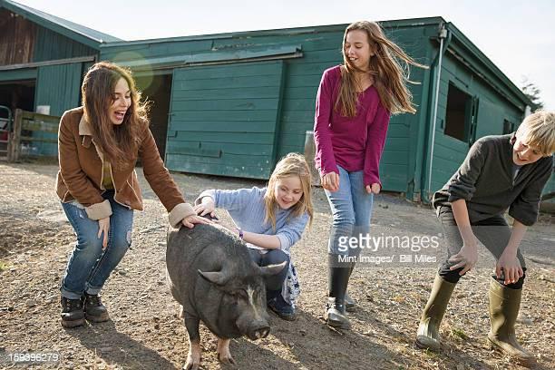Tres niños y una mujer joven con una gran cerdo,