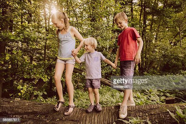 Three children balancing on fallen tree in forest
