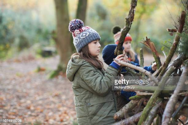 three children building a den in autumnal woodland - shack stock pictures, royalty-free photos & images