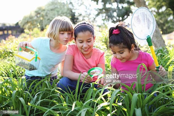 Three children catching butterflies on a bright day