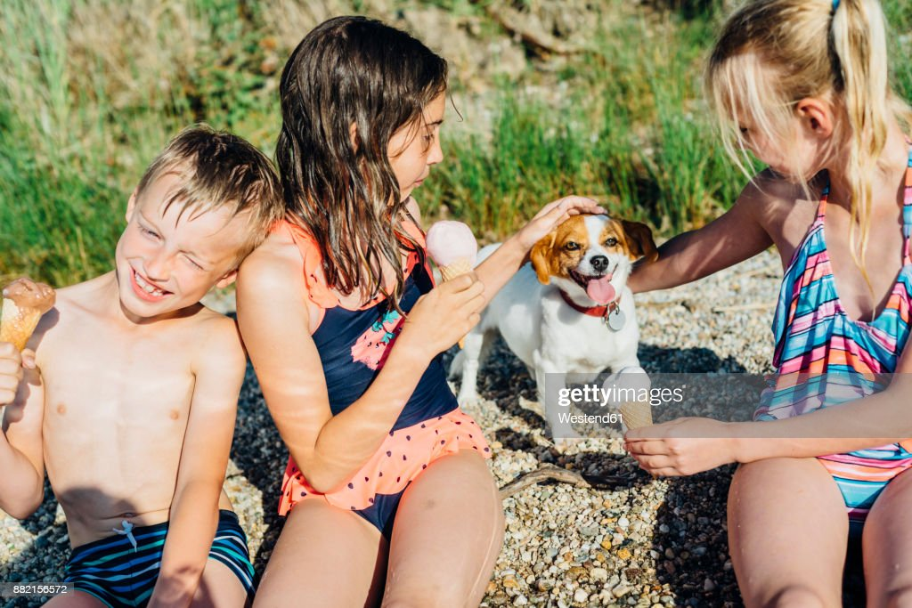 Three children eating icecream and playing with dog on the beach : Stock Photo