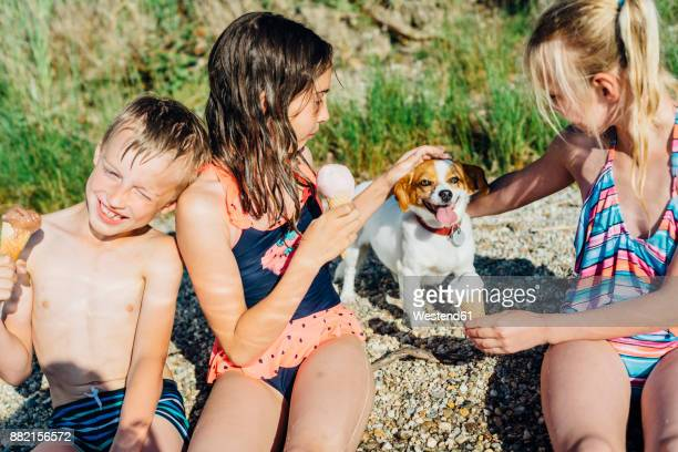 three children eating icecream and playing with dog on the beach - dog eats out girl stock pictures, royalty-free photos & images