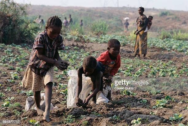 Three children fertilize a field in order to buy food They are paid about $003 for an hour's work Buying or growing enough food to survive can be a...