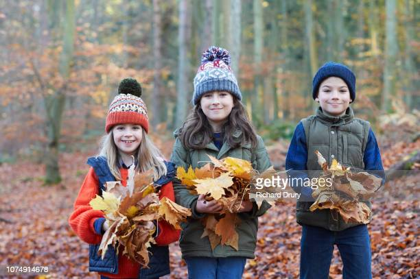 Three children holding leaves in Autumnal woodland