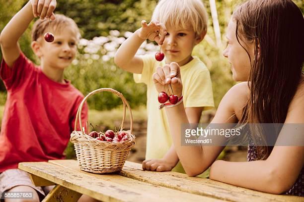 Three children holding up cherries in garden