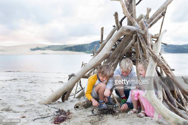 Three Children on a beautiful beach in a homemade driftwood teepee building a fire