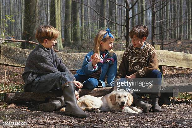 three children sitting with dog on bench in forest - dog eats out girl stock pictures, royalty-free photos & images