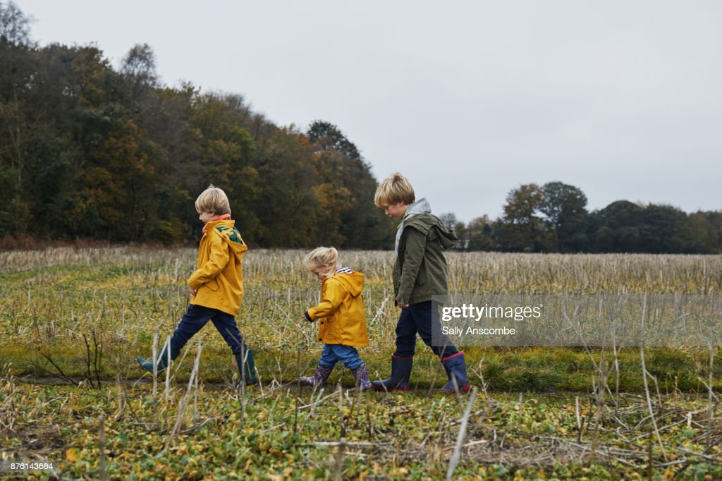 Three children waling though a field together : Stock Photo