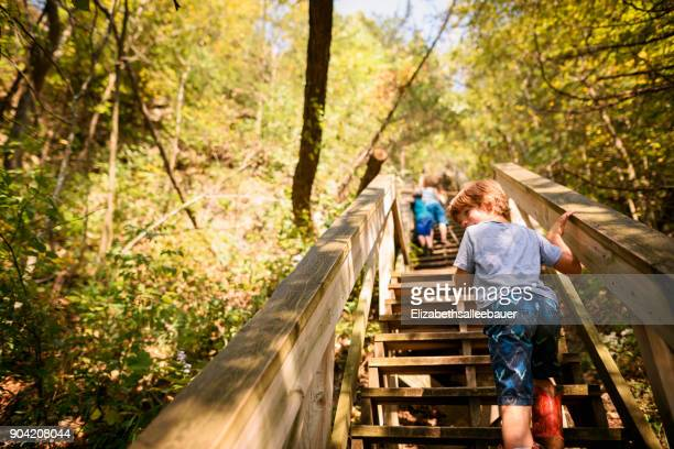 Three children walking up trail stairs in the woods