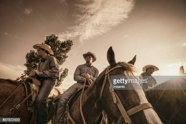 three cowboys horseback riding at sunset. - three animals stock pictures, royalty-free photos & images