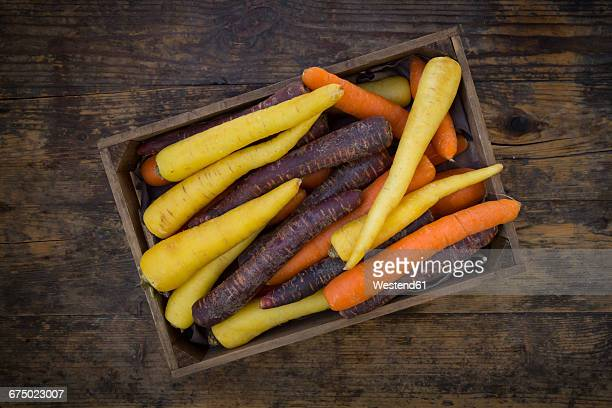 Three different sorts of carrots in a wooden box