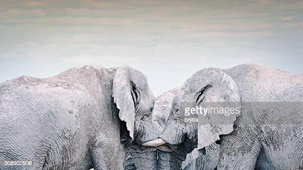 Drei Elefanten Geselligkeit gemeinsam