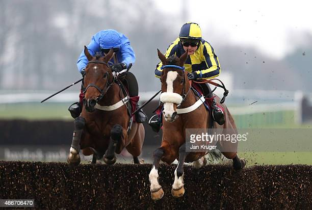Three Face West ridden by James Cowley wins the ApolloBet In Play Betting ÒFixed BrushÓ NovicesÕ Hurdle Race during Irish day at Haydock Races on...