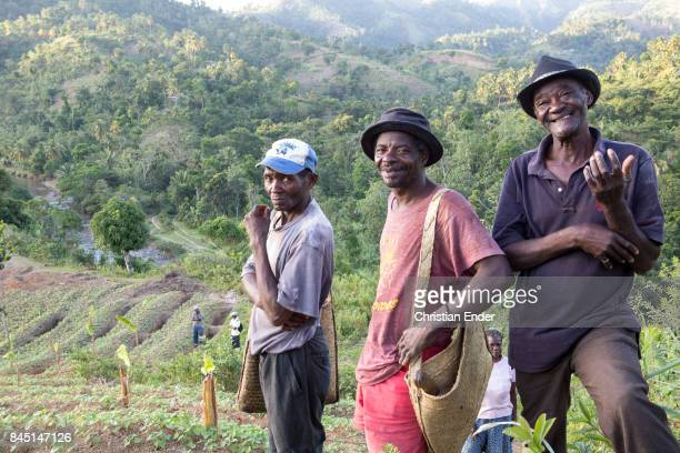 Three farmers are standing in front of a field with newly planted probably coffee seedlings Two of them are smiling towards the camera one of them...