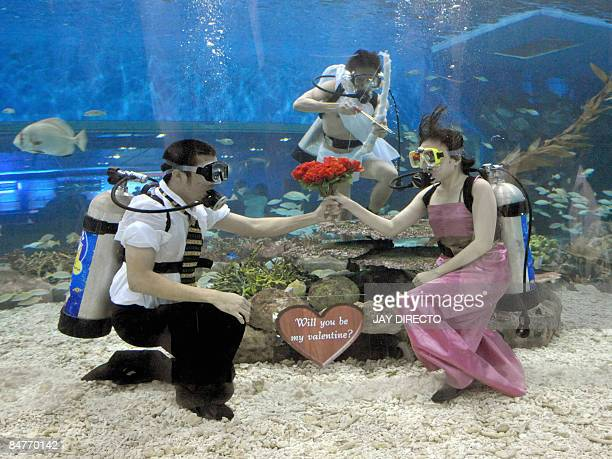 Three Filipino staff in scuba gear pose as Cupid and a couple inside a large seawater aquarium at a marine theme park in Manila Bay on February 13...