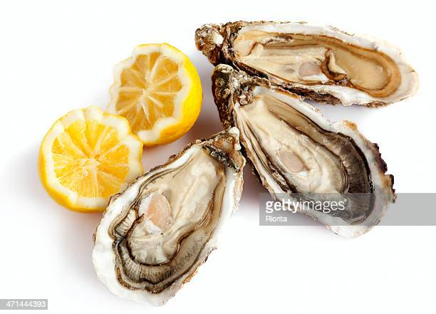 three fresh oysters with lemon - oyster shell stock photos and pictures